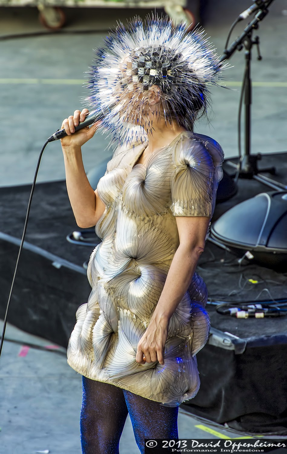 bjork-15-06-2013-bonnaroo-74-david-oppen