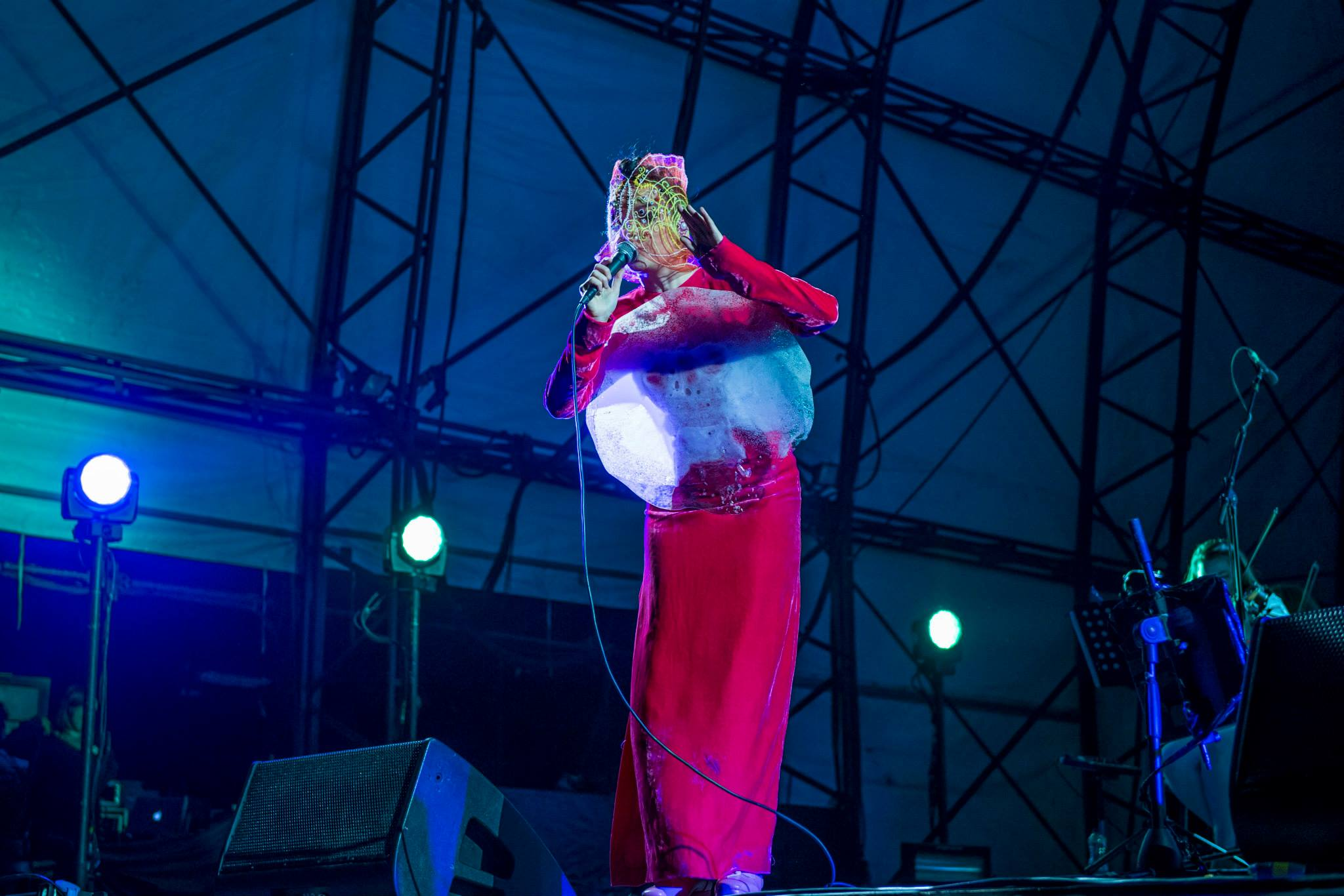 bjork-2015-wilderness-festival-05-windho