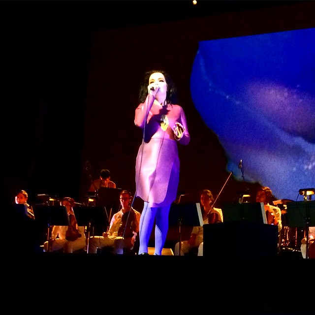 bjork-25-03-2015-ny-city-center-03-misha