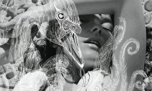 Photo Inez + Vinoodh - Vespertine